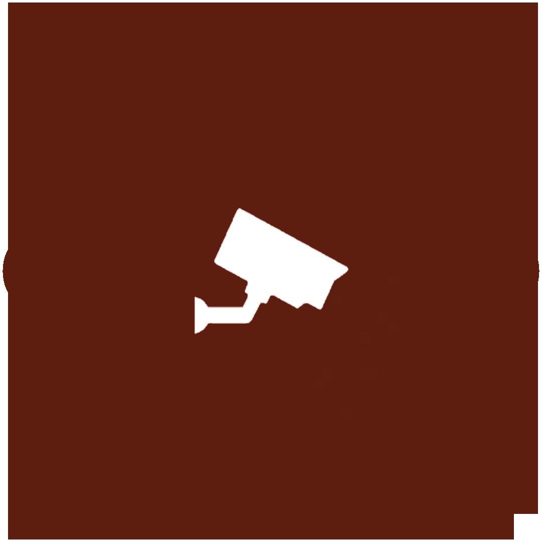 Sistema de CCTV en accesos